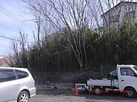 Cimg2567
