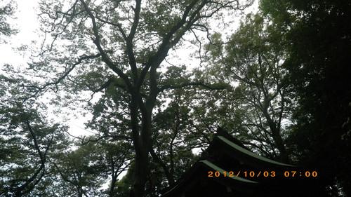 Imgp1359_2